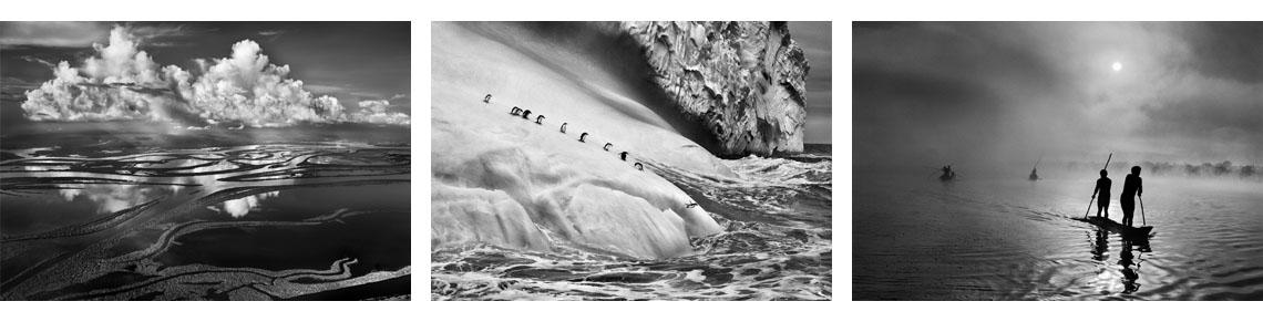 dos grandes exposiciones fotográficas, Sebastiao Salgado